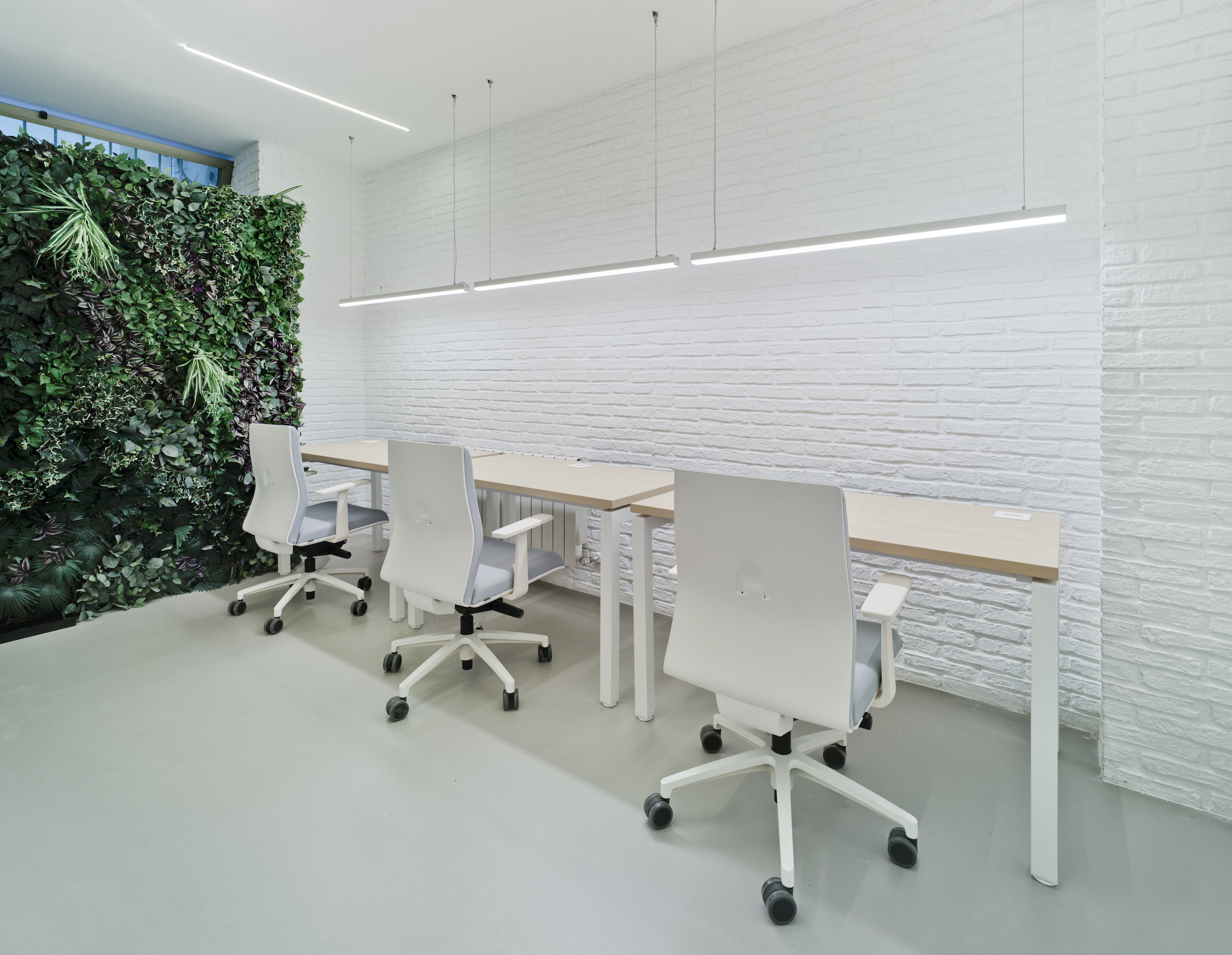 Despachos | The Underground Den. Coworking & Business Center